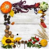 Todavía del otoño cosecha de la vida Imagen de archivo libre de regalías