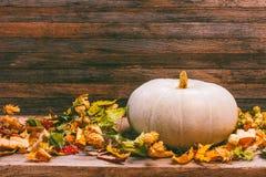 Todavía del otoño la vida con la calabaza y seca las hojas en un fondo de madera Imagen de archivo