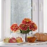 Todavía del otoño la vida con las dalias rojas en un tarro de la lata, calabaza, una taza de té y manzanas en la ventana en tiemp Fotografía de archivo libre de regalías