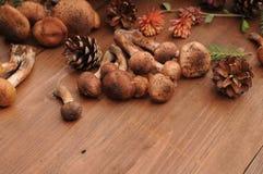Todavía del otoño setas de la vida en una tabla Imagenes de archivo
