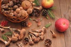 Todavía del otoño setas de la vida en una tabla Imagen de archivo libre de regalías
