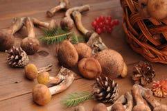Todavía del otoño setas de la vida en una tabla Foto de archivo libre de regalías