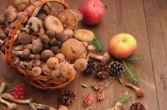 Todavía del otoño setas de la vida en una tabla Foto de archivo