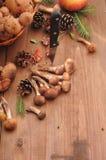 Todavía del otoño setas de la vida en una tabla Imagen de archivo