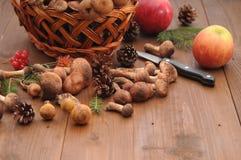 Todavía del otoño setas de la vida en una tabla Fotos de archivo libres de regalías