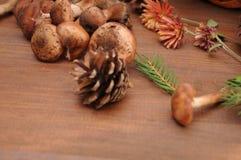 Todavía del otoño setas de la vida en una tabla Fotografía de archivo libre de regalías