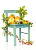 Todavía del otoño silla de la vida Fotografía de archivo