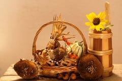Todavía del otoño vida Imagen de archivo