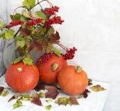 Todavía del otoño vida Foto de archivo