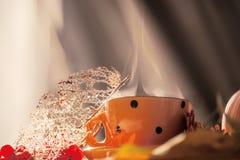 Todavía del otoño vida acogedora Taza anaranjada con el cocido al vapor de la bebida al vapor y hojas y bayas secas Foto del arte fotografía de archivo libre de regalías