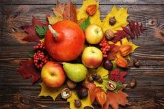 Todavía del otoño vida, calabazas cosechadas con las hojas de la caída y autum Imagen de archivo