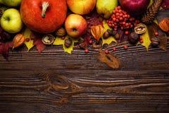 Todavía del otoño vida, calabazas cosechadas con las hojas de la caída y autum Foto de archivo libre de regalías