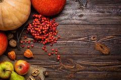 Todavía del otoño vida, calabazas cosechadas y fruta del otoño, regalos de Imagenes de archivo