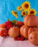 Todavía del otoño vida Calabazas para Halloween y el día de la acción de gracias Foto de archivo