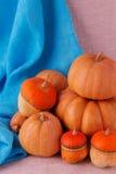 Todavía del otoño vida Calabazas para Halloween y el día de la acción de gracias Fotos de archivo