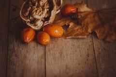 Todavía del otoño vida caliente con las nueces Imagenes de archivo