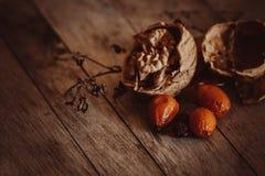 Todavía del otoño vida caliente con las nueces Fotos de archivo