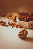 Todavía del otoño vida caliente con las nueces Imagen de archivo