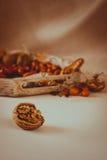 Todavía del otoño vida caliente con las nueces Fotos de archivo libres de regalías