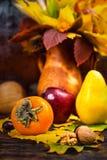 Todavía del otoño vida colorida de la cosecha y de las nueces que mienten en árbol Imagenes de archivo