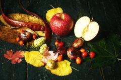 Todavía del otoño vida con Apple en un fondo oscuro Fotografía de archivo