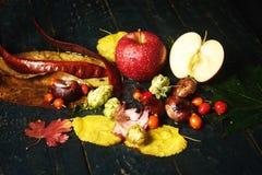 Todavía del otoño vida con Apple en un fondo oscuro Fotos de archivo