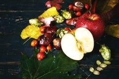 Todavía del otoño vida con Apple en un fondo oscuro Imagen de archivo libre de regalías