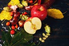 Todavía del otoño vida con Apple rojo Imagen de archivo