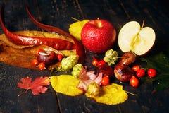 Todavía del otoño vida con Apple rojo Fotos de archivo libres de regalías