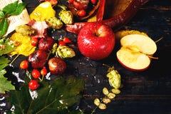 Todavía del otoño vida con Apple rojo Imagen de archivo libre de regalías