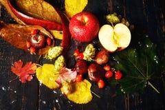 Todavía del otoño vida con Apple rojo Fotografía de archivo libre de regalías