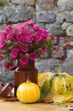 Todavía del otoño vida con calabaza Foto de archivo libre de regalías