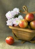 Todavía del otoño vida con el crisantemo rojo del manzana y blanco Foto de archivo libre de regalías