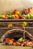 Todavía del otoño vida con la fruta en hojas a bordo y backgr de las vides Imágenes de archivo libres de regalías