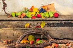 Todavía del otoño vida con la fruta en hojas a bordo y backgr de las vides Foto de archivo libre de regalías
