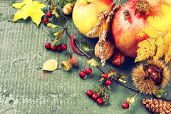 Todavía del otoño vida con la granada, la manzana y las hojas de la caída Caída Fotos de archivo