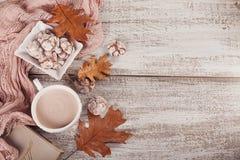 Todavía del otoño vida con la taza de galletas del cacao y del chocolate Imagenes de archivo