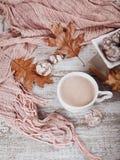 Todavía del otoño vida con la taza de galletas del cacao y del chocolate Foto de archivo
