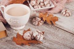 Todavía del otoño vida con la taza de galletas del cacao y del chocolate Imagen de archivo libre de regalías