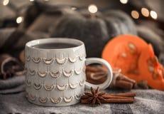 Todavía del otoño vida con la taza de té Imágenes de archivo libres de regalías