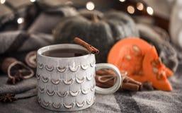 Todavía del otoño vida con la taza de té Imagen de archivo libre de regalías