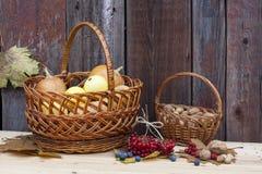 Todavía del otoño vida con las calabazas en cesta y baya del otoño en el viejo fondo de madera, primer Fotos de archivo