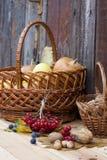 Todavía del otoño vida con las calabazas en cesta y baya del otoño en el viejo fondo de madera, primer Foto de archivo libre de regalías