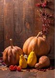 Todavía del otoño vida con las calabazas, las hojas, las bayas del escaramujo y el physalis contra la perspectiva de la pared de  Foto de archivo