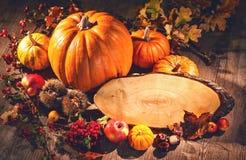 Todavía del otoño vida con las calabazas, las frutas y las bayas con el SP de la copia Foto de archivo libre de regalías