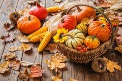 Todavía del otoño vida con las calabazas, las mazorcas de maíz y las hojas Imagen de archivo