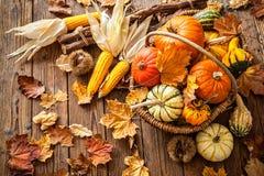 Todavía del otoño vida con las calabazas, las mazorcas de maíz y las hojas Foto de archivo