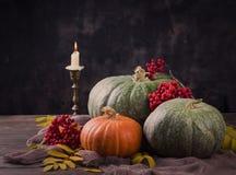 Todavía del otoño vida con las calabazas y las flores Imagen de archivo
