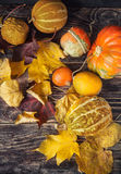 Todavía del otoño vida con las calabazas y las hojas en backgro de madera viejo Fotos de archivo libres de regalías