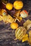 Todavía del otoño vida con las calabazas y las hojas en backgro de madera viejo Imagen de archivo libre de regalías